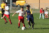 9251 McM Boys Soccer v Sea-Chr 092910